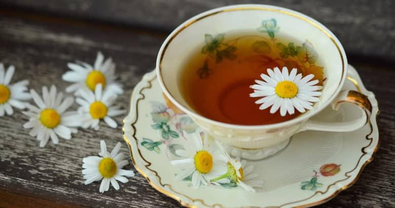 Cultivo de ervas para chá