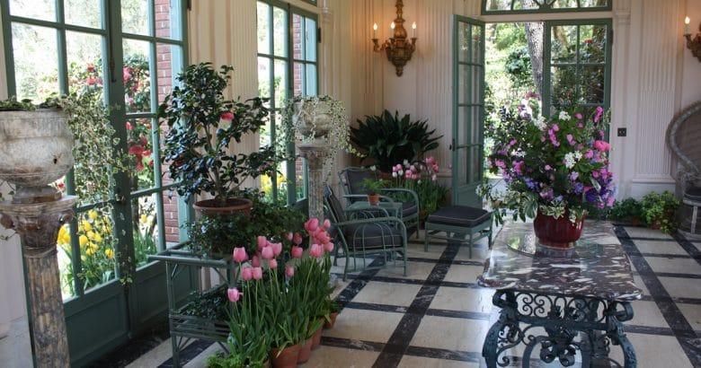 decoração campestre | Jardinagem, Jardim, Flor, Natureza, Atrium, Plantas